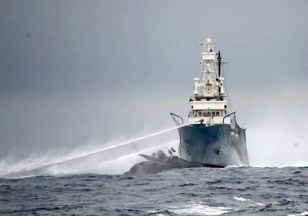 Sea Shepherd Ship vs ship