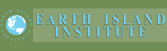 Non profit organisation Earth Island institute
